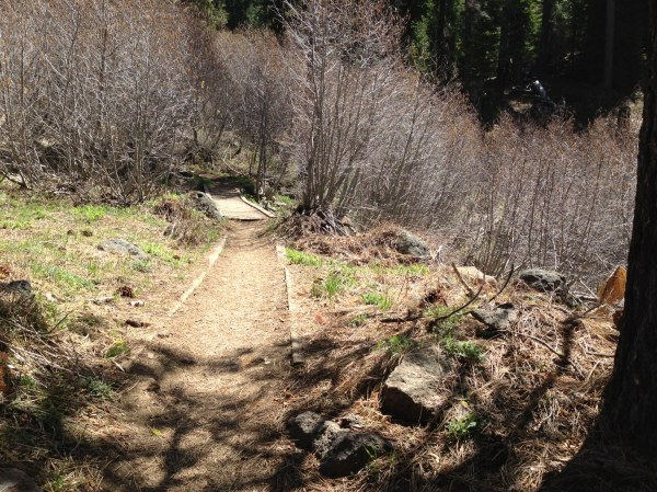 Western States Trail