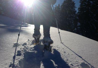 Tahoe Mountain Guides Snowshoe Tours
