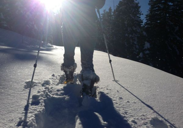 Tahoe Mountain Guides Snowshoe Tours
