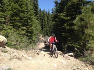 Tahoe Mountain Guides: MTB Tours, MTB Guides, Shuttles